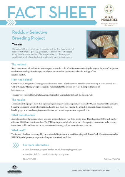 Redclaw selective breeding project - fact sheet - image
