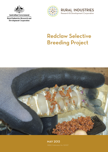 Redclaw Selective Breeding Project - image