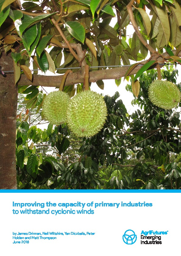 Improving the capacity of primary industries to withstand cyclonic winds - image
