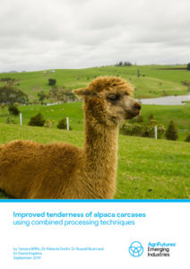 Improved tenderness of alpaca carcases using combined processing techniques - image