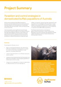 Project summary: Parasitism and control strategies in domesticated buffalo populations of Australia - image