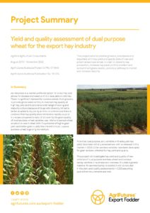 Project summary: Yield and quality assessment of dual purpose wheat for the export hay industry - image