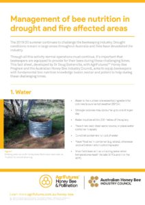 Management of bee nutrition in drought and fire affected areas - image