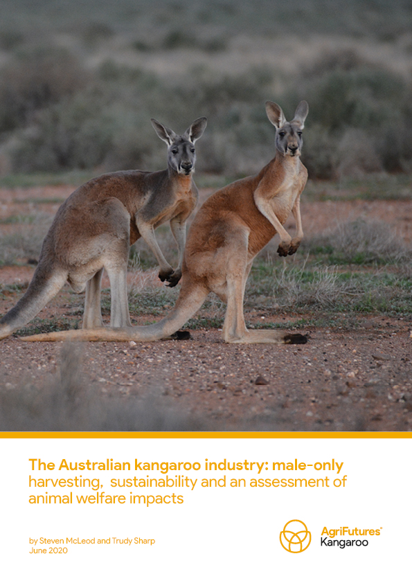 The Australian kangaroo industry: male-only harvesting, sustainability and an assessment of animal welfare impacts - image
