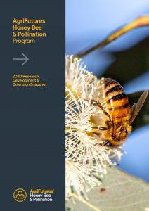 AgriFutures Honey Bee & Pollination Program: 2020 Research,  Development &  Extension Snapshot - image