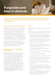 Fungicides and bees in almonds - image