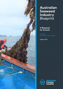 Australian Seaweed Industry Blueprint - A Blueprint for Growth - image