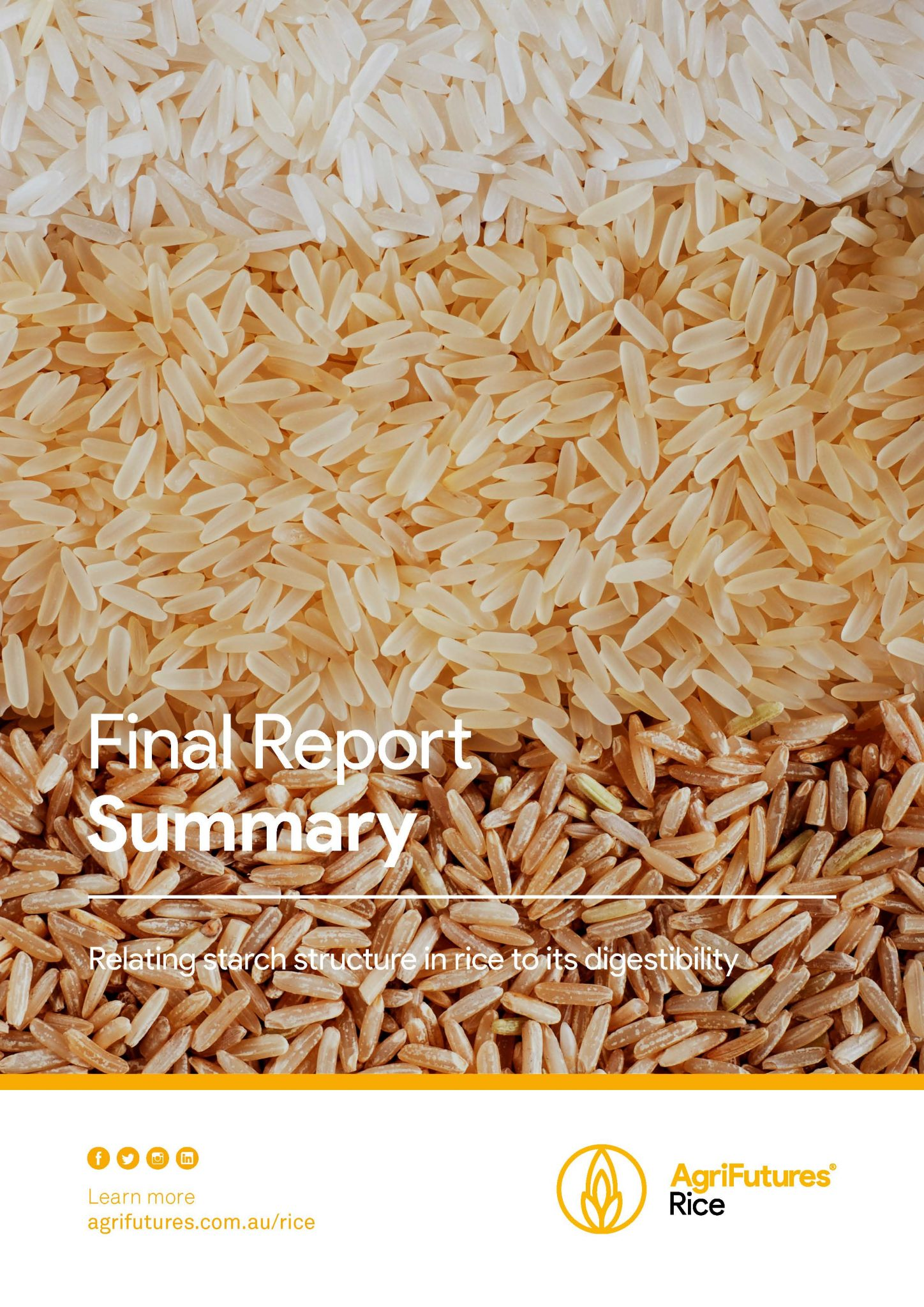 Final Report Summary: Relating starch structure in rice to its digestibility - image