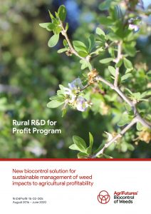 New biocontrol solution for sustainable management of weed impacts to agricultural profitability - image