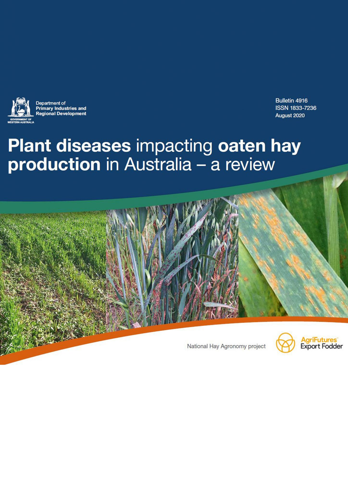 Plant diseases impacting oaten hay production in Australia – a review - image