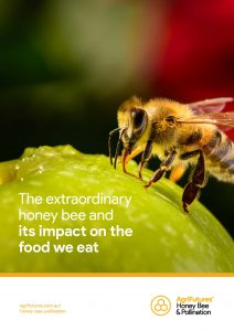 The extraordinary honey bee and its impact on the food we eat - image
