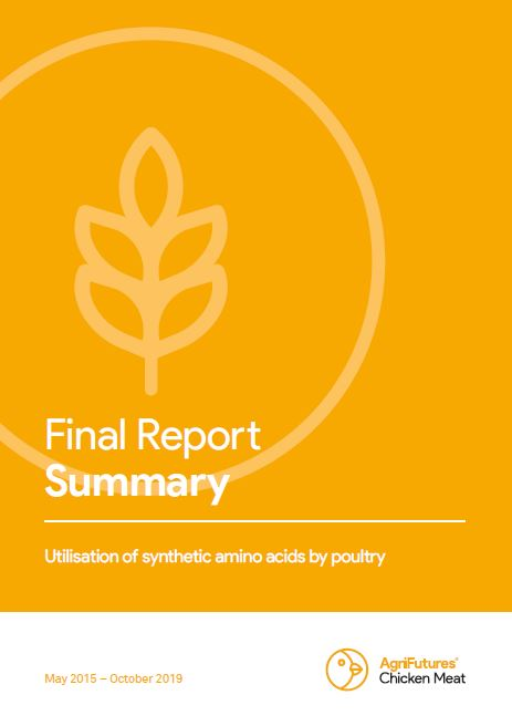 Utilisation of synthetic amino acids by poultry - image