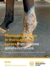 Photosensitisation in thoroughbred horses from cowpea aphid infestations - image