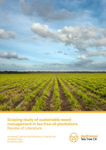Scoping study of sustainable weed management in tea tree oil plantations: Review of Literature - image