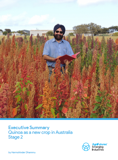 Executive Summary: Quinoa as a new crop in Australia - Stage 2 - image