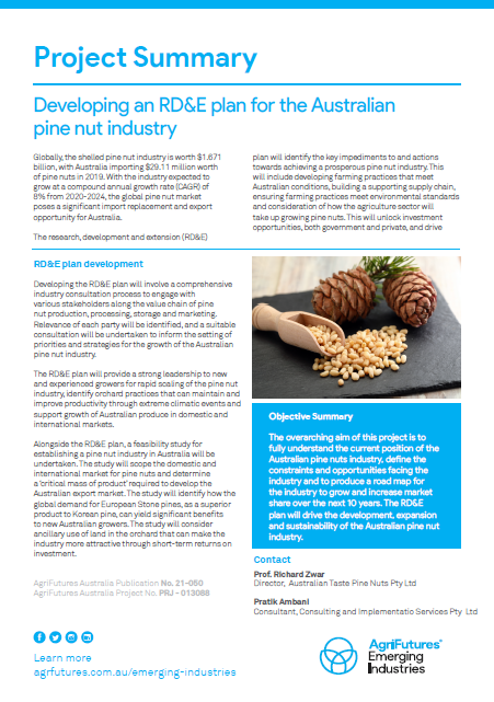 Project Summary: Developing an RD&E plan for the Australian pine nut industry - image