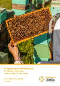 Progressing implementation of genetic selection in Australian honey bees - image