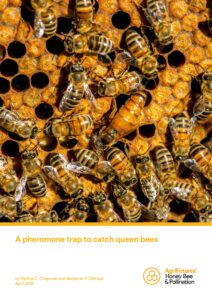 A pheromone trap to catch queen bees - image
