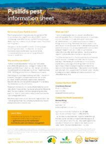 Pysllids pest information sheet - image
