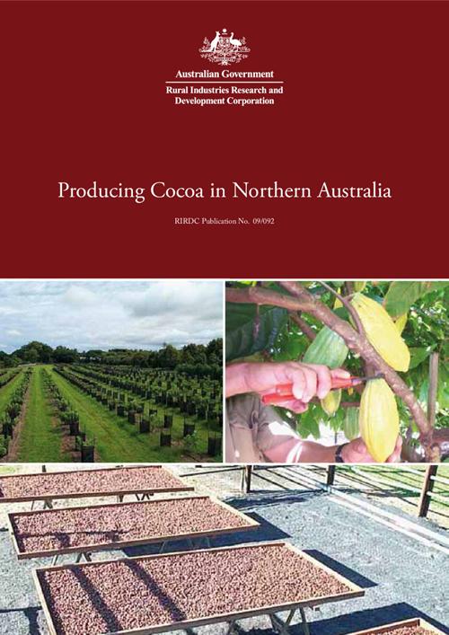 Producing Cocoa in Northern Australia - image