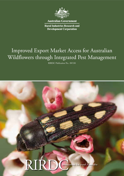 Improved Export Market Access for Australian Wildflowers through Integrated Pest Management - image