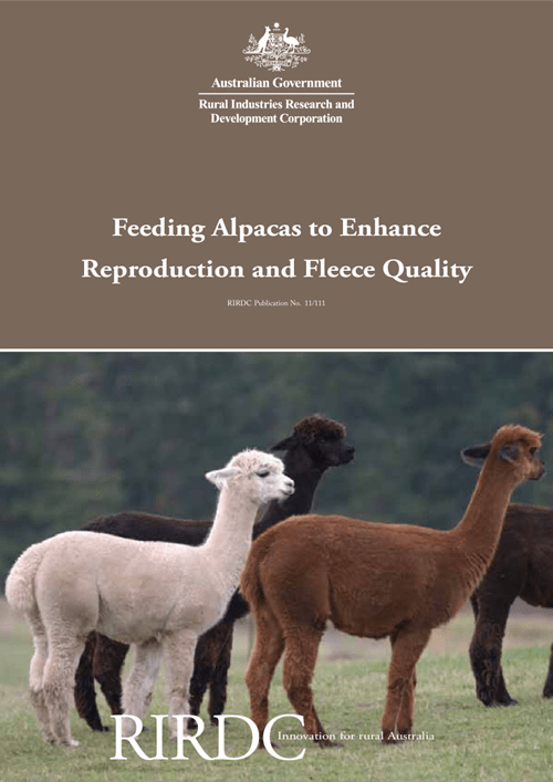 Feeding Alpacas to Enhance Reproduction and Fleece Quality - image