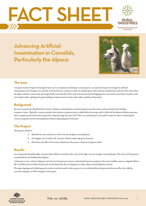 Advancing Artificial Insemination in Camelids, Particularly the Alpaca   - fact sheet - image