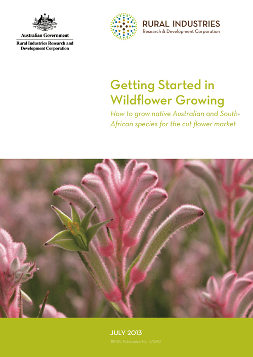 Getting Started in Wildflower Growing - How to grow native Australian and South African species for the cut flower market - image