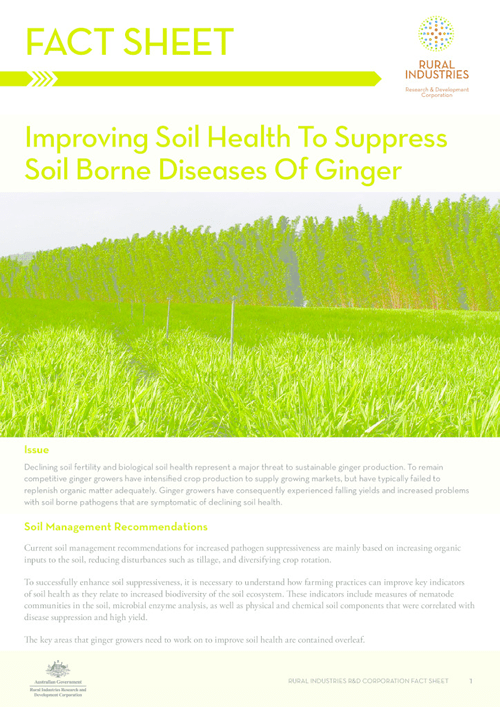 Fact Sheet: Improving Soil Health To Suppress Soil Borne Diseases Of Ginger - image